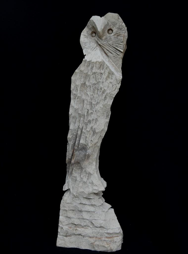 Bilge Baykuş - Ekrem Öztürk